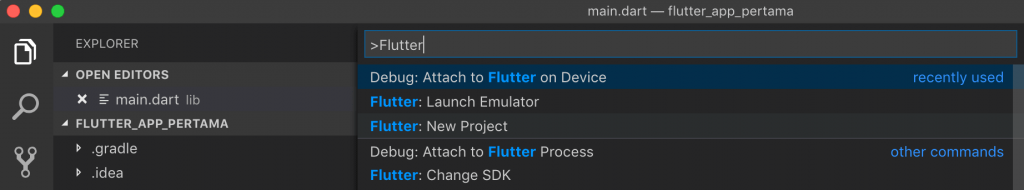 Flutter New Project